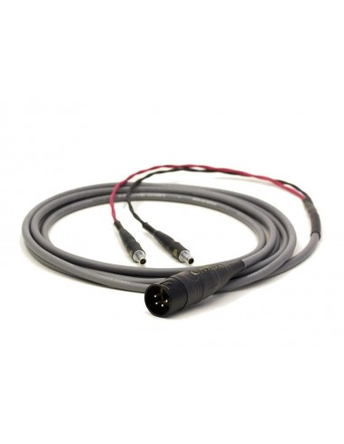 Cardas - Câble casque HD800 - 3 m.
